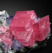 最绝密珍贵的石头开花 千万年一见