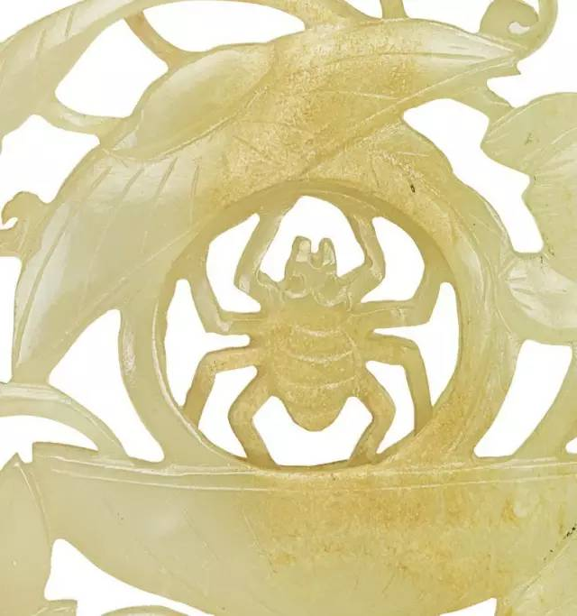莲纹中间 为何是一只蜘蛛