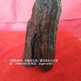 玛瑙木化石  且行且珍惜