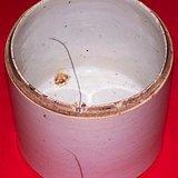 35:晚清白釉盖缸