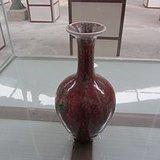 豇豆红孔雀绿菊瓣瓶