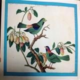 19世纪清代通草画-花鸟3