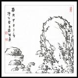 张智华山石-静观事态
