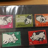 特40 养猪邮票,真品